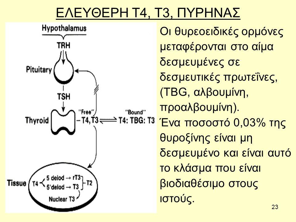 23 ΕΛΕΥΘΕΡΗ Τ4, Τ3, ΠΥΡΗΝΑΣ Οι θυρεοειδικές ορμόνες μεταφέρονται στο αίμα δεσμευμένες σε δεσμευτικές πρωτεΐνες, (TBG, αλβουμίνη, προαλβουμίνη).