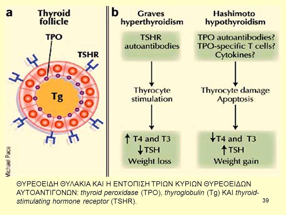 39 ΘΥΡΕΟΕΙΔΗ ΘΥΛΑΚΙΑ ΚΑΙ Η ΕΝΤΟΠΙΣΗ ΤΡΙΩΝ ΚΥΡΙΩΝ ΘΥΡΕΟΕΙΔΩΝ ΑΥΤΟΑΝΤΙΓΟΝΩΝ: thyroid peroxidase (TPO), thyroglobulin (Tg) ΚΑΙ thyroid- stimulating hormone receptor (TSHR).