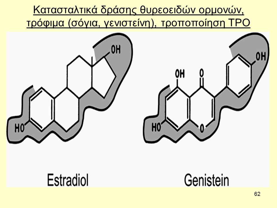 62 Κατασταλτικά δράσης θυρεοειδών ορμονών, τρόφιμα (σόγια, γενιστείνη), τροποποίηση TPO