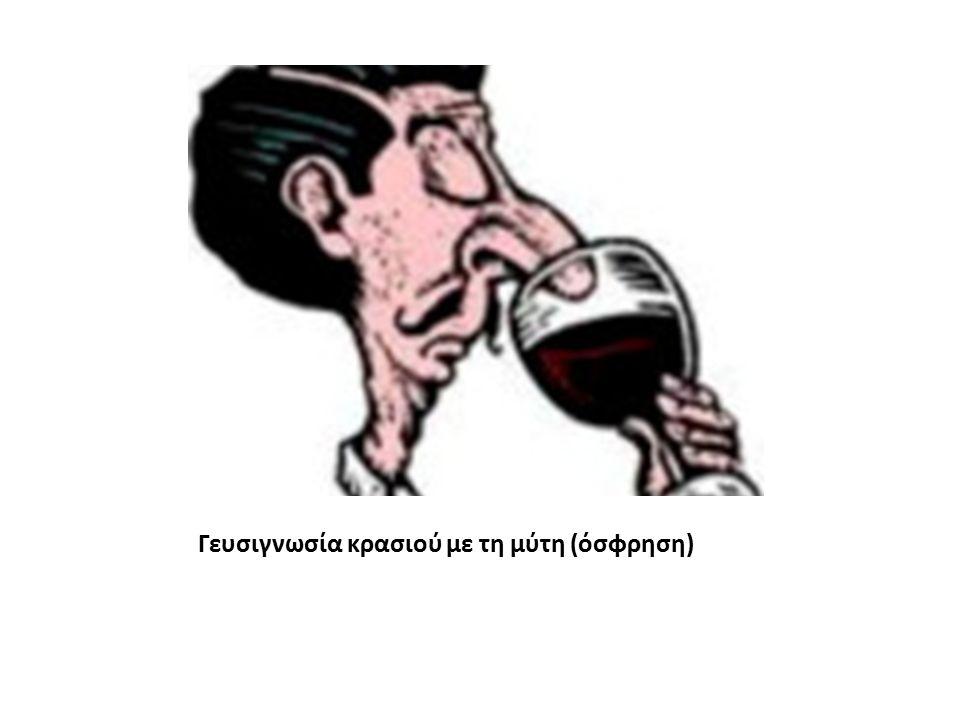 Γευσιγνωσία κρασιού με τη μύτη (όσφρηση)