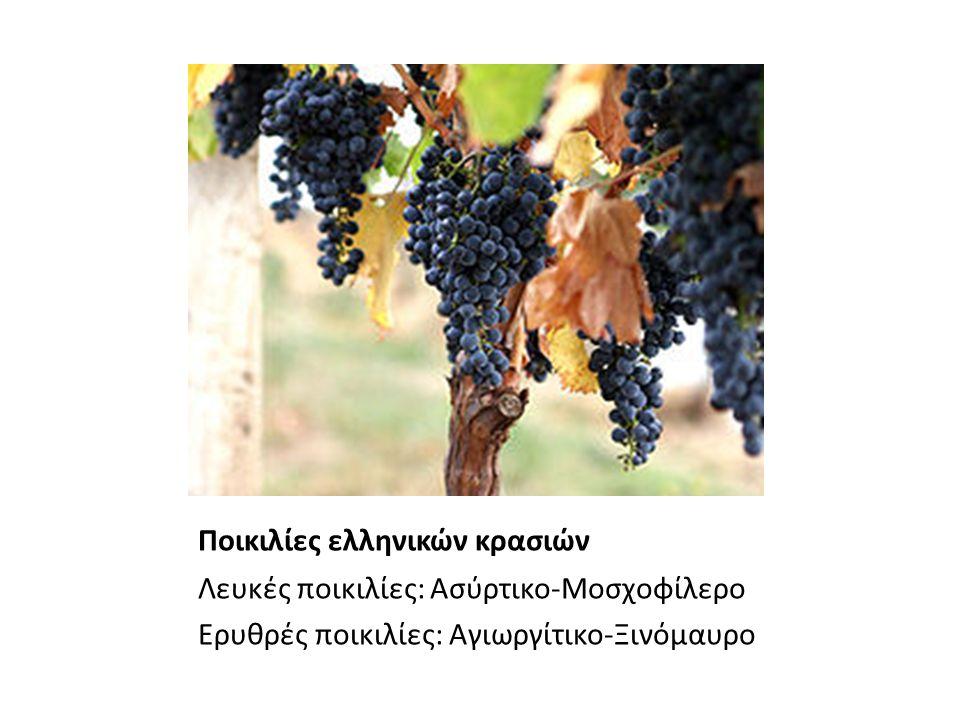 Ποικιλίες ελληνικών κρασιών Λευκές ποικιλίες: Ασύρτικο-Μοσχοφίλερο Ερυθρές ποικιλίες: Αγιωργίτικο-Ξινόμαυρο