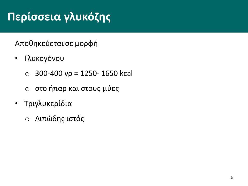 5 Περίσσεια γλυκόζης Αποθηκεύεται σε μορφή Γλυκογόνου o 300-400 γρ = 1250- 1650 kcal o στο ήπαρ και στους μύες Τριγλυκερίδια o Λιπώδης ιστός