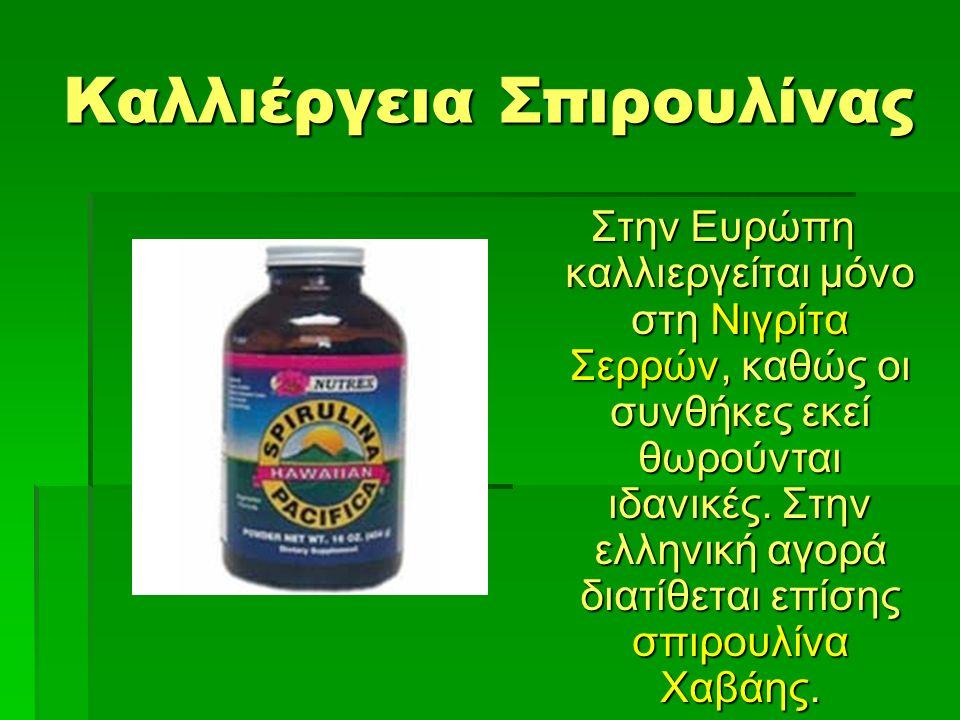 Καλλιέργεια Σπιρουλίνας Στην Ευρώπη καλλιεργείται μόνο στη Νιγρίτα Σερρών, καθώς οι συνθήκες εκεί θωρούνται ιδανικές.