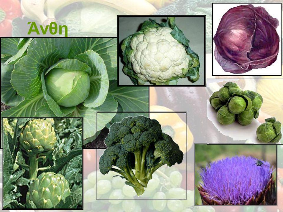 Μπορούμε να βρούμε λαχανικά σε διάφορες μορφές Φρέσκα Κατεψυγμένα Κονσερβοποιημένα Διατηρημένα σε ξίδι ή αλάτι Γλυκά - μαρμελάδες