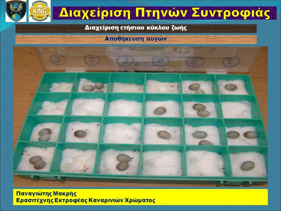 Αποθήκευση αυγών Παναγιώτης Μακρής Ερασιτέχνης Εκτροφέας Καναρινιών Χρώματος Διαχείριση ετήσιου κύκλου ζωής