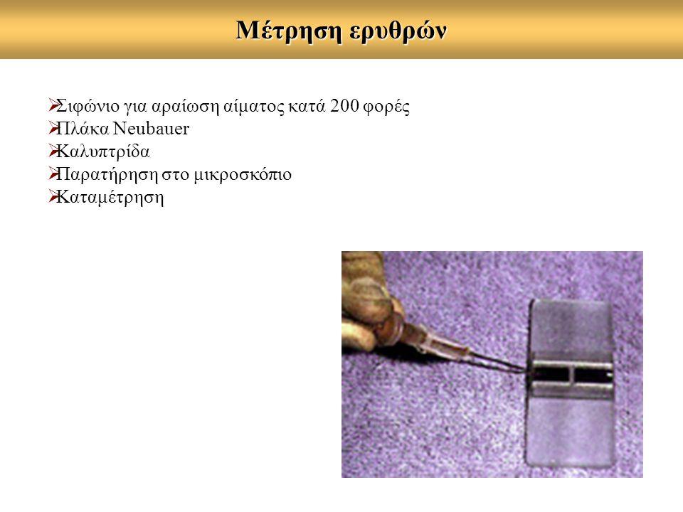 Μέτρηση ερυθρών  Σιφώνιο για αραίωση αίματος κατά 200 φορές  Πλάκα Neubauer  Καλυπτρίδα  Παρατήρηση στο μικροσκόπιο  Καταμέτρηση