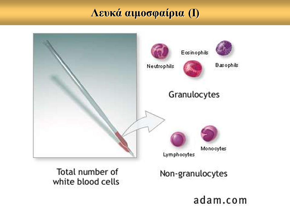 Λευκά αιμοσφαίρια (Ι)