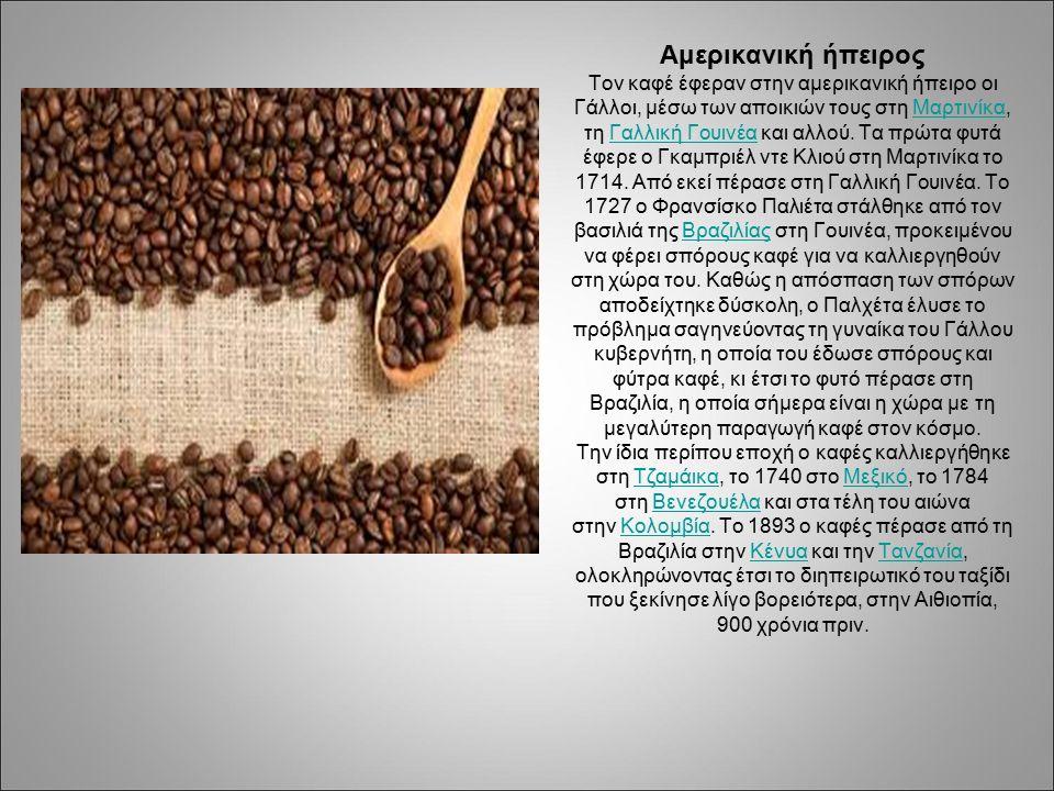 Αμερικανική ήπειρος Τον καφέ έφεραν στην αμερικανική ήπειρο οι Γάλλοι, μέσω των αποικιών τους στη Μαρτινίκα, τη Γαλλική Γουινέα και αλλού.