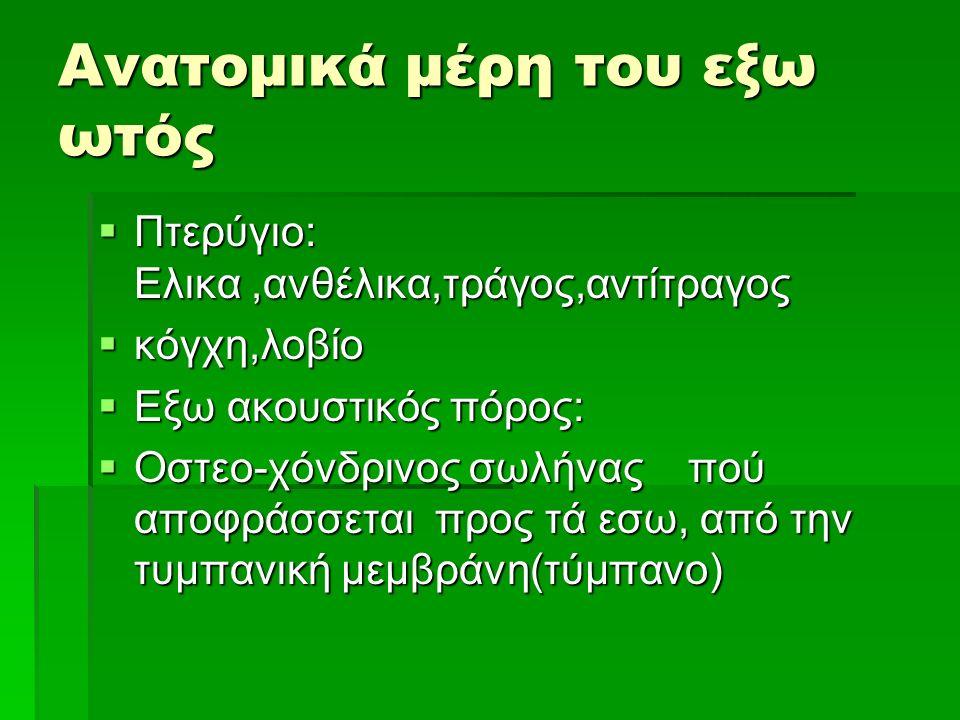 Ανατομικά μέρη του εξω ωτός  Πτερύγιο: Ελικα,ανθέλικα,τράγος,αντίτραγος  κόγχη,λοβίο  Εξω ακουστικός πόρος:  Οστεο-χόνδρινος σωλήνας πού αποφράσσεται προς τά εσω, από την τυμπανική μεμβράνη(τύμπανο)