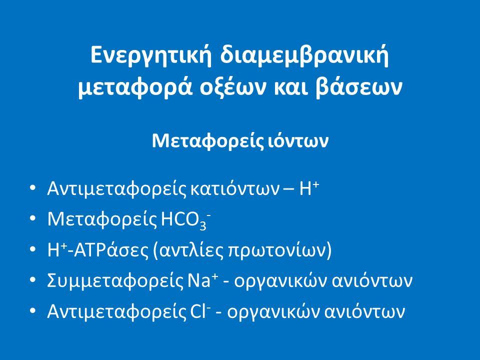 Ενεργητική διαμεμβρανική μεταφορά οξέων και βάσεων Μεταφορείς ιόντων Αντιμεταφορείς κατιόντων – Η + Μεταφορείς HCO 3 - H + -ATPάσες (αντλίες πρωτονίων) Συμμεταφορείς Na + - οργανικών ανιόντων Αντιμεταφορείς Cl - - οργανικών ανιόντων