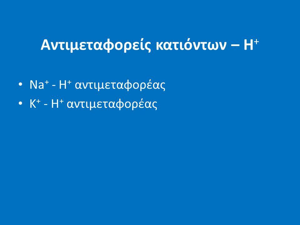 Αντιμεταφορείς κατιόντων – Η + Na + - H + αντιμεταφορέας Κ + - Η + αντιμεταφορέας