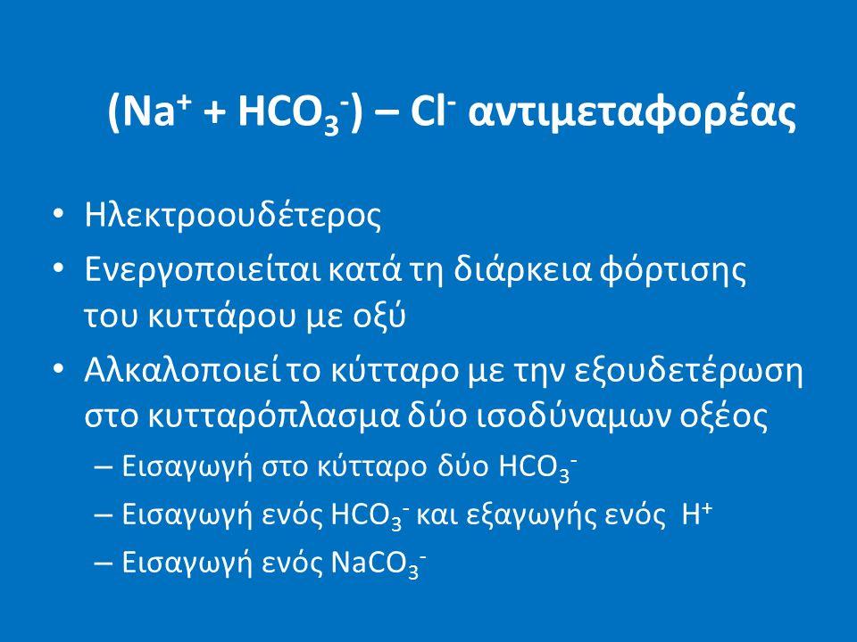 (Νa + + HCO 3 - ) – Cl - αντιμεταφορέας Ηλεκτροουδέτερος Ενεργοποιείται κατά τη διάρκεια φόρτισης του κυττάρου με οξύ Αλκαλοποιεί το κύτταρο με την εξουδετέρωση στο κυτταρόπλασμα δύο ισοδύναμων οξέος – Εισαγωγή στο κύτταρο δύο HCO 3 - – Εισαγωγή ενός HCO 3 - και εξαγωγής ενός Η + – Εισαγωγή ενός NaCO 3 -