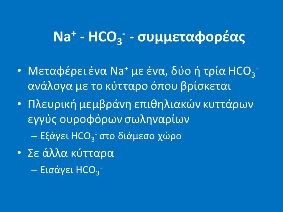 Na + - HCO 3 - - συμμεταφορέας Μεταφέρει ένα Na + με ένα, δύο ή τρία HCO 3 - ανάλογα με το κύτταρο όπου βρίσκεται Πλευρική μεμβράνη επιθηλιακών κυττάρων εγγύς ουροφόρων σωληναρίων – Εξάγει HCO 3 - στο διάμεσο χώρο Σε άλλα κύτταρα – Εισάγει HCO 3 -