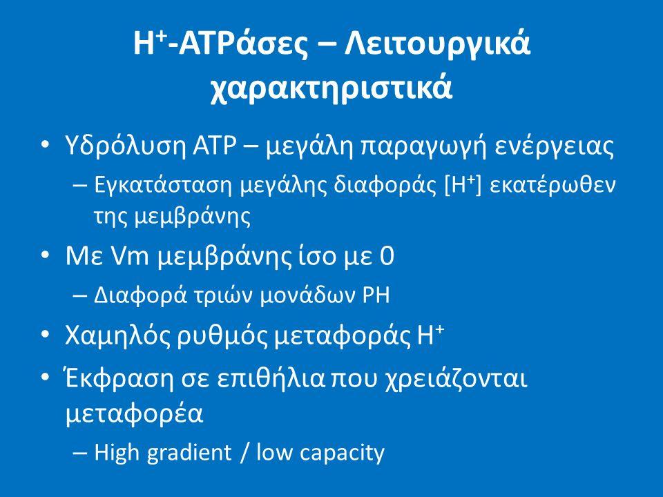 H + -ATPάσες – Λειτουργικά χαρακτηριστικά Υδρόλυση ATP – μεγάλη παραγωγή ενέργειας – Εγκατάσταση μεγάλης διαφοράς [Η + ] εκατέρωθεν της μεμβράνης Με Vm μεμβράνης ίσο με 0 – Διαφορά τριών μονάδων PH Χαμηλός ρυθμός μεταφοράς H + Έκφραση σε επιθήλια που χρειάζονται μεταφορέα – High gradient / low capacity