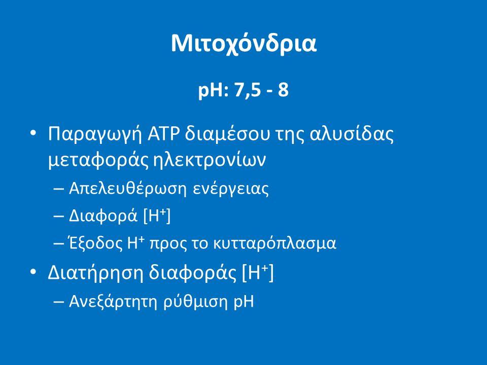 Μιτοχόνδρια pH: 7,5 - 8 Παραγωγή ATP διαμέσου της αλυσίδας μεταφοράς ηλεκτρονίων – Απελευθέρωση ενέργειας – Διαφορά [Η + ] – Έξοδος H + προς το κυτταρόπλασμα Διατήρηση διαφοράς [Η + ] – Ανεξάρτητη ρύθμιση pH