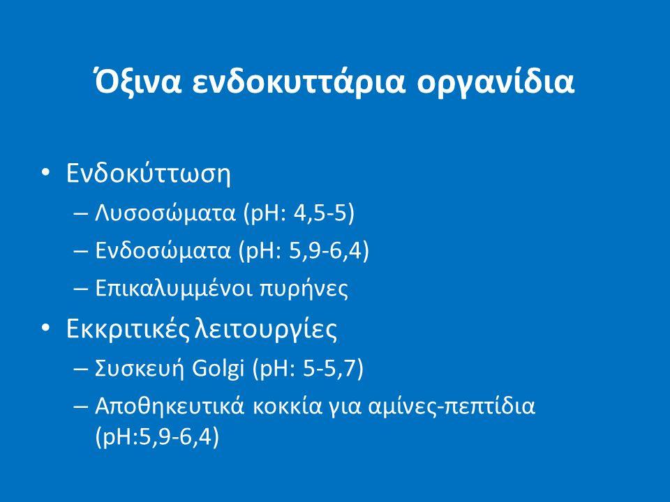Όξινα ενδοκυττάρια οργανίδια Ενδοκύττωση – Λυσοσώματα (pH: 4,5-5) – Ενδοσώματα (pH: 5,9-6,4) – Επικαλυμμένοι πυρήνες Εκκριτικές λειτουργίες – Συσκευή Golgi (pH: 5-5,7) – Αποθηκευτικά κοκκία για αμίνες-πεπτίδια (pH:5,9-6,4)