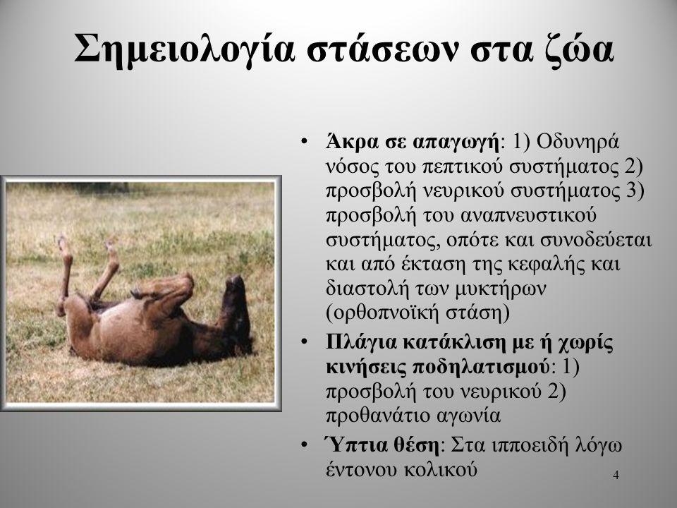 Σημειολογία στάσεων στα ζώα Άκρα σε απαγωγή: 1) Οδυνηρά νόσος του πεπτικού συστήματος 2) προσβολή νευρικού συστήματος 3) προσβολή του αναπνευστικού συστήματος, οπότε και συνοδεύεται και από έκταση της κεφαλής και διαστολή των μυκτήρων (ορθοπνοϊκή στάση) Πλάγια κατάκλιση με ή χωρίς κινήσεις ποδηλατισμού: 1) προσβολή του νευρικού 2) προθανάτιο αγωνία Ύπτια θέση: Στα ιπποειδή λόγω έντονου κολικού 4