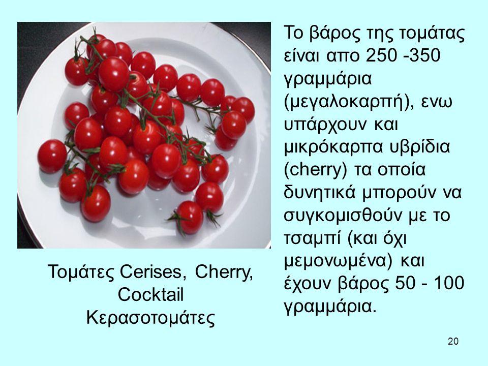20 Τομάτες Cerises, Cherry, Cocktail Κερασοτομάτες Το βάρος της τομάτας είναι απο 250 -350 γραμμάρια (μεγαλοκαρπή), ενω υπάρχουν και μικρόκαρπα υβρίδια (cherry) τα οποία δυνητικά μπορούν να συγκομισθούν με το τσαμπί (και όχι μεμονωμένα) και έχουν βάρος 50 - 100 γραμμάρια.