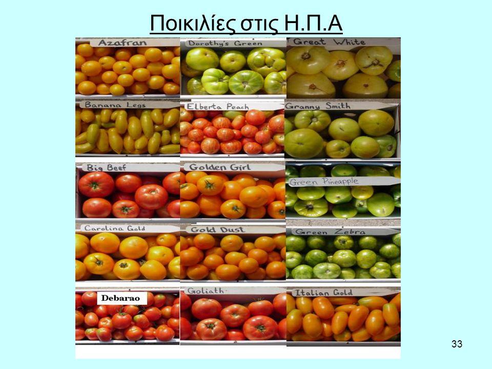 33 Ποικιλίες στις Η.Π.Α