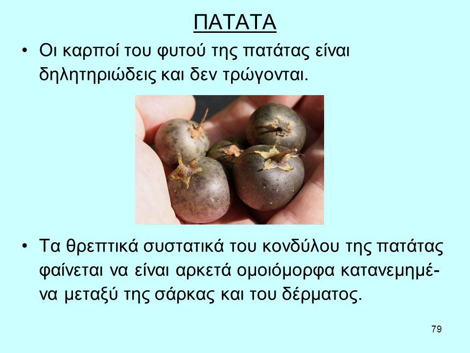 79 ΠΑΤΑΤΑ Οι καρποί του φυτού της πατάτας είναι δηλητηριώδεις και δεν τρώγονται.