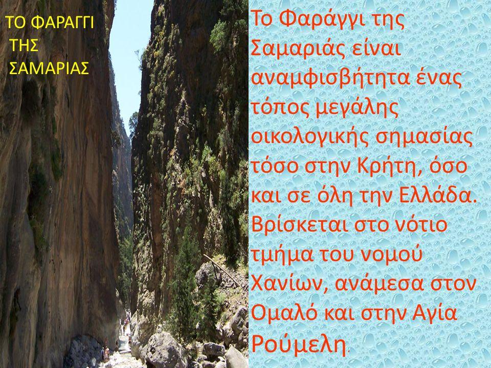 Το Φαράγγι της Σαμαριάς είναι αναμφισβήτητα ένας τόπος μεγάλης οικολογικής σημασίας τόσο στην Κρήτη, όσο και σε όλη την Ελλάδα. Βρίσκεται στο νότιο τμ