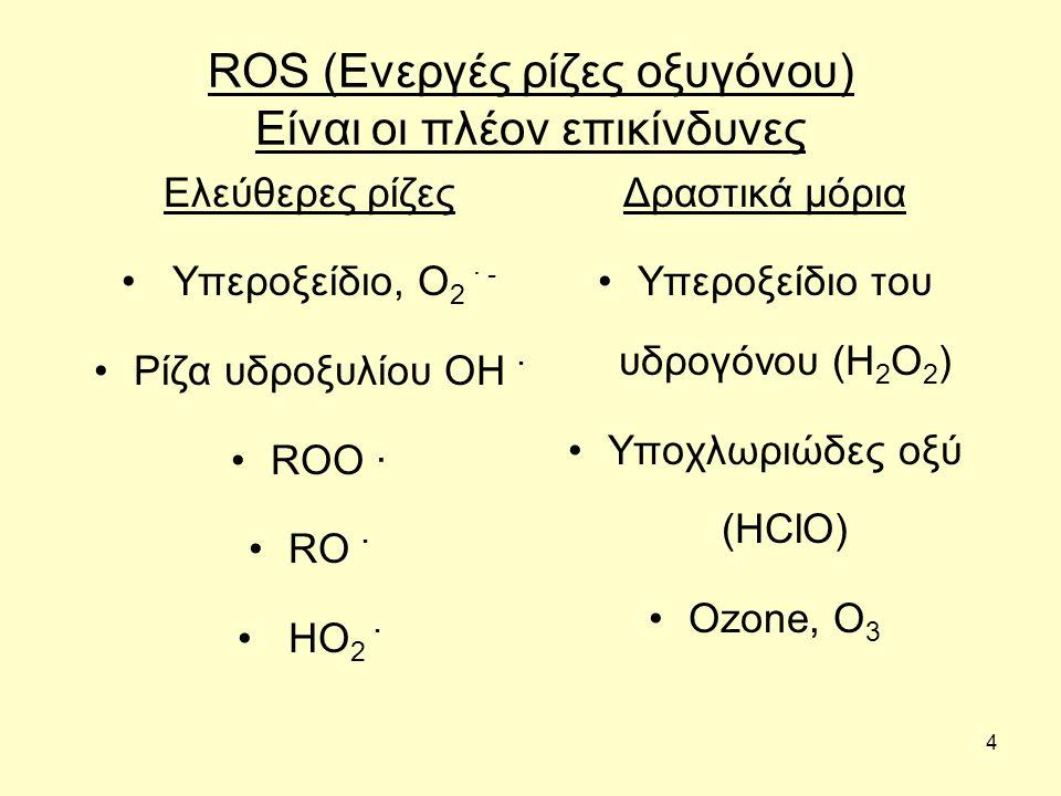 4 ROS (Ενεργές ρίζες οξυγόνου) Είναι οι πλέον επικίνδυνες Ελεύθερες ρίζες Υπεροξείδιο, O 2 · - Ρίζα υδροξυλίου OH · ROO · RO · HO 2 · Δραστικά μόρια Υ