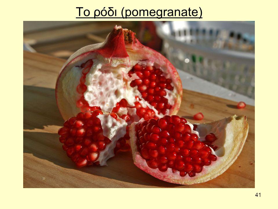 41 Το ρόδι (pomegranate)