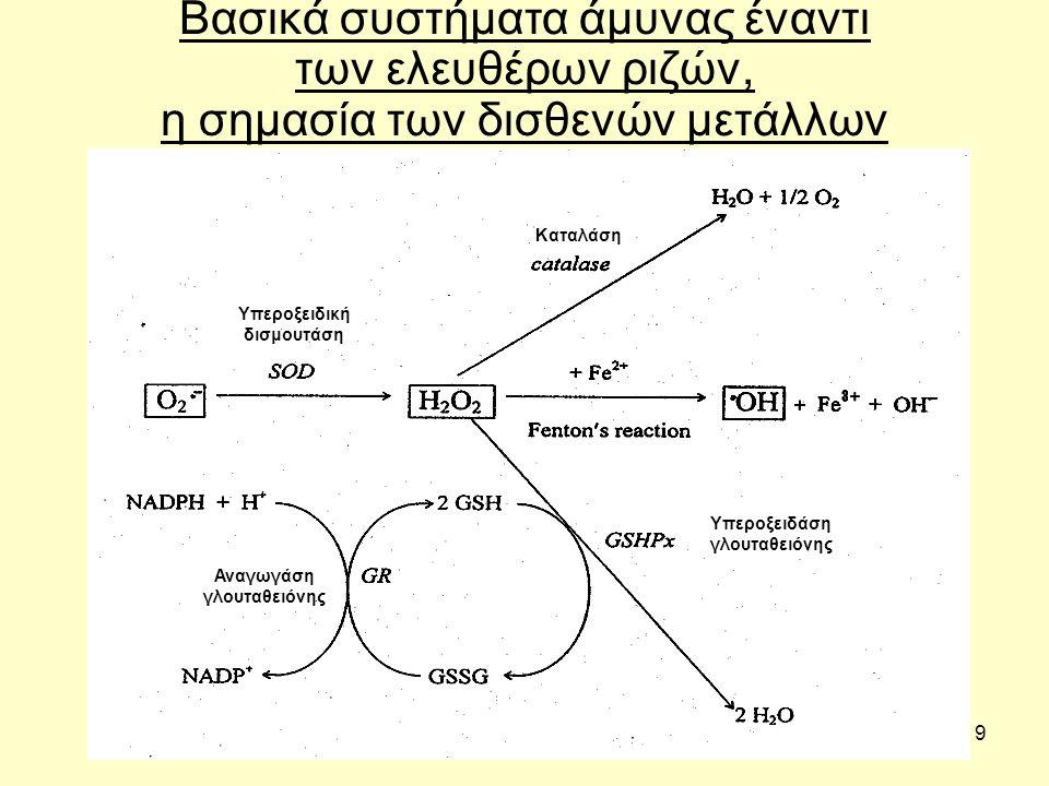 9 Βασικά συστήματα άμυνας έναντι των ελευθέρων ριζών, η σημασία των δισθενών μετάλλων Υπεροξειδάση γλουταθειόνης Αναγωγάση γλουταθειόνης Υπεροξειδική