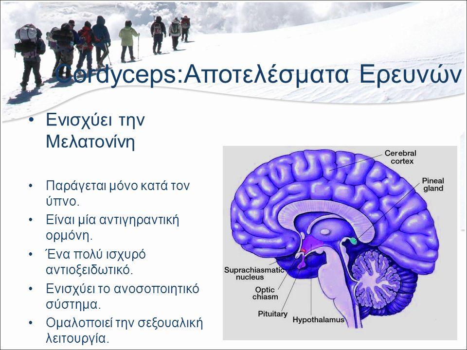 Cordyceps:Αποτελέσματα Ερευνών Ενισχύει την Μελατονίνη Παράγεται μόνο κατά τον ύπνο.