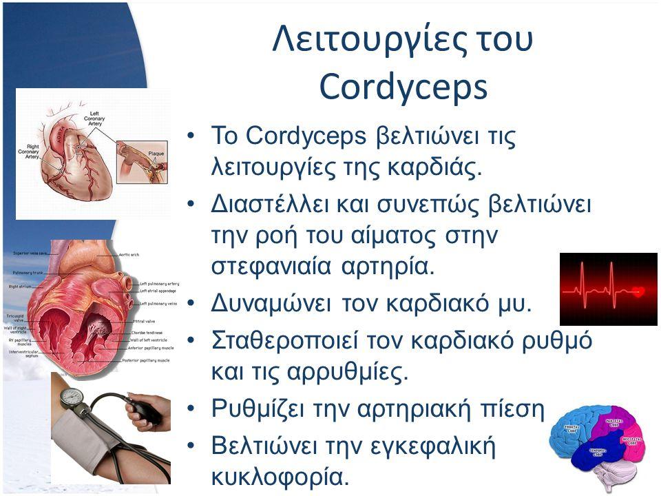 Λειτουργίες του Cordyceps Το Cordyceps βελτιώνει τις λειτουργίες της καρδιάς.