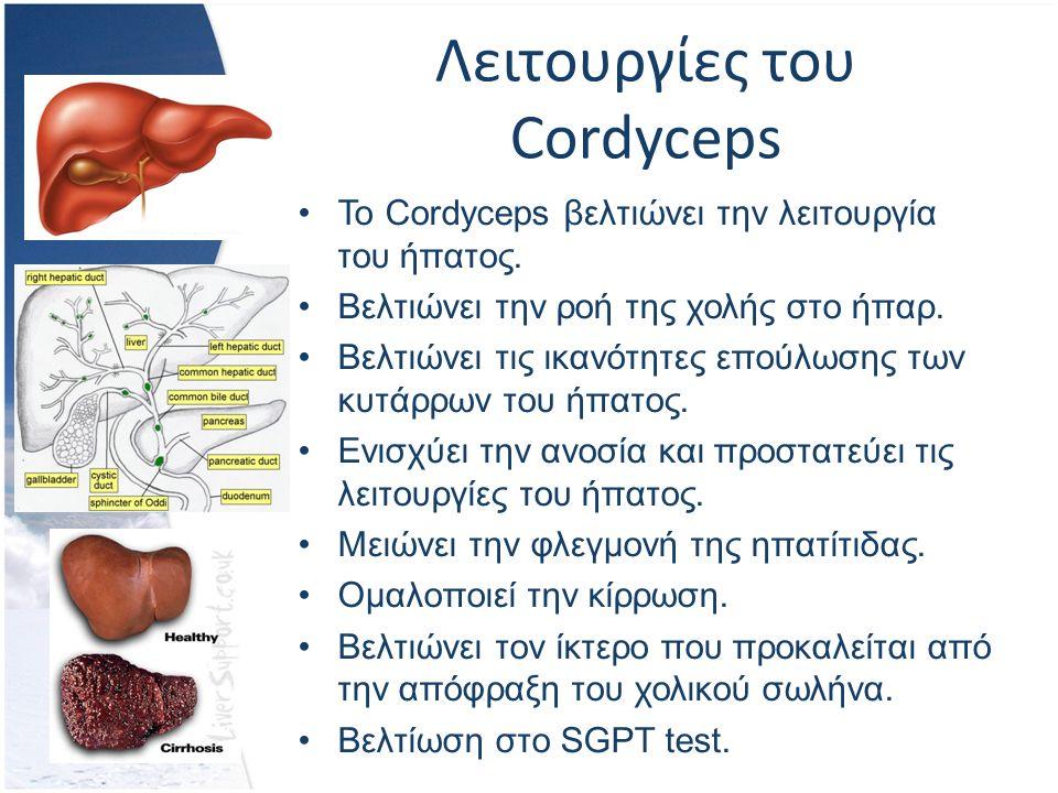 Λειτουργίες του Cordyceps Το Cordyceps βελτιώνει την λειτουργία του ήπατος.