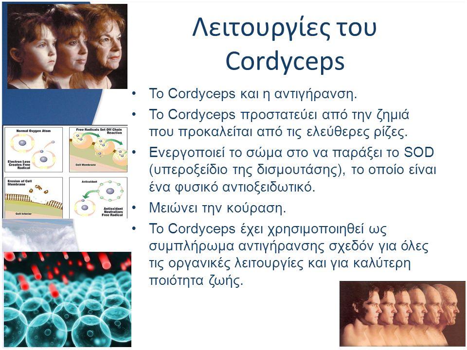 Λειτουργίες του Cordyceps Το Cordyceps και η αντιγήρανση.