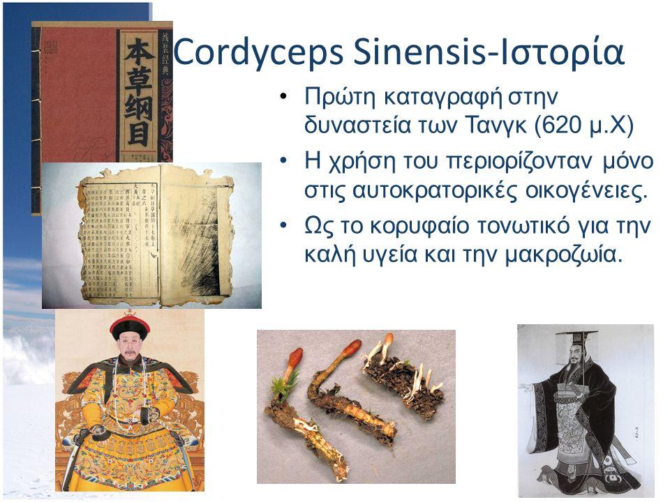 Cordyceps Sinensis-Ιστορία Πρώτη καταγραφή στην δυναστεία των Τανγκ (620 μ.Χ) Η χρήση του περιορίζονταν μόνο στις αυτοκρατορικές οικογένειες.