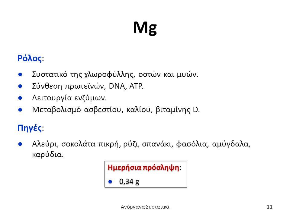 Mg Ρόλος: ●Συστατικό της χλωροφύλλης, οστών και μυών.