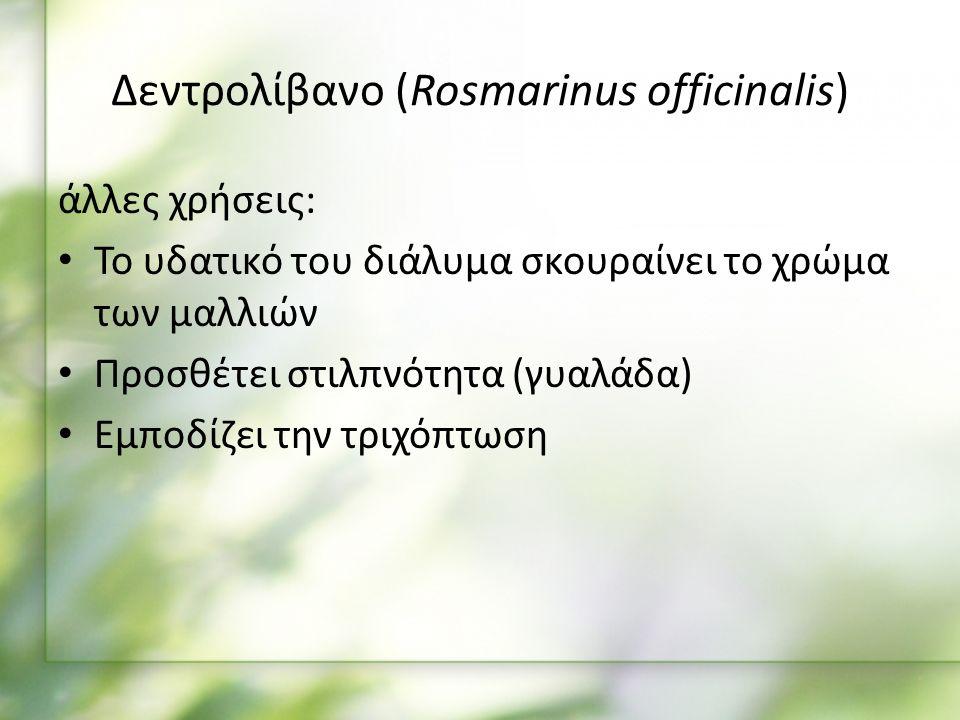 άλλες χρήσεις: Το υδατικό του διάλυμα σκουραίνει το χρώμα των μαλλιών Προσθέτει στιλπνότητα (γυαλάδα) Εμποδίζει την τριχόπτωση Δεντρολίβανο (Rosmarinus officinalis)