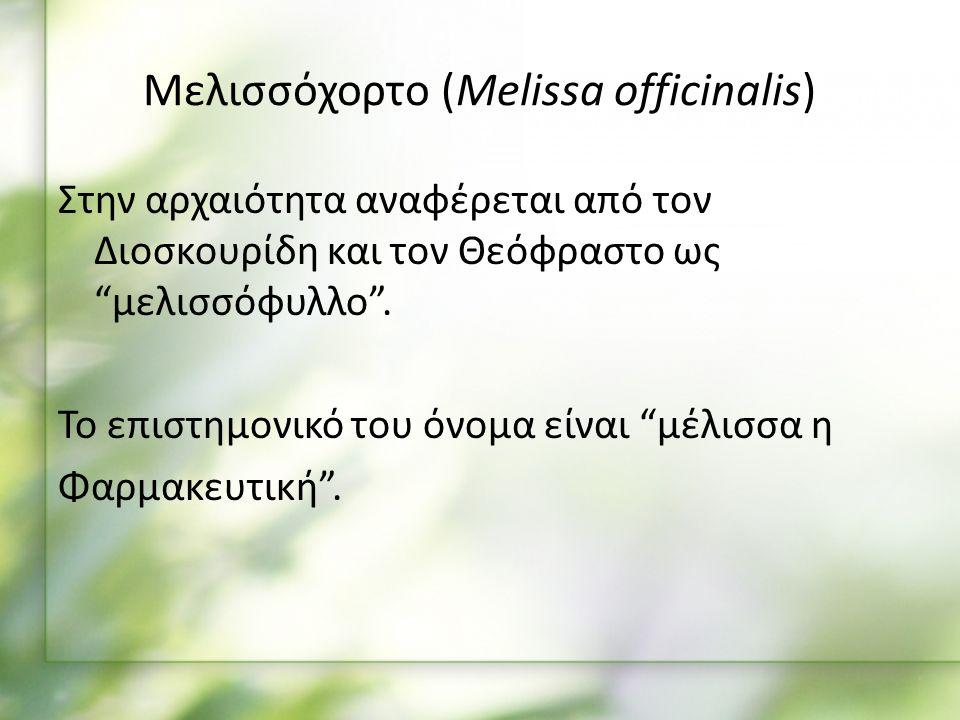 Μελισσόχορτο (Melissa officinalis) Στην αρχαιότητα αναφέρεται από τον Διοσκουρίδη και τον Θεόφραστο ως μελισσόφυλλο .