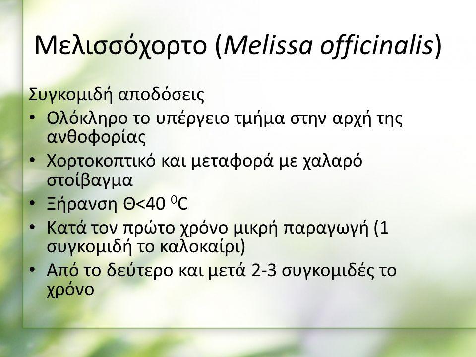 Συγκομιδή αποδόσεις Ολόκληρο το υπέργειο τμήμα στην αρχή της ανθοφορίας Χορτοκοπτικό και μεταφορά με χαλαρό στοίβαγμα Ξήρανση Θ<40 0 C Κατά τον πρώτο χρόνο μικρή παραγωγή (1 συγκομιδή το καλοκαίρι) Από το δεύτερο και μετά 2-3 συγκομιδές το χρόνο Μελισσόχορτο (Melissa officinalis)