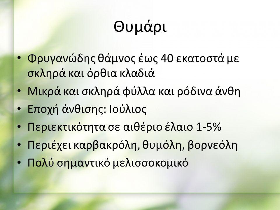 Φρυγανώδης θάμνος έως 40 εκατοστά με σκληρά και όρθια κλαδιά Μικρά και σκληρά φύλλα και ρόδινα άνθη Εποχή άνθισης: Ιούλιος Περιεκτικότητα σε αιθέριο έλαιο 1-5% Περιέχει καρβακρόλη, θυμόλη, βορνεόλη Πολύ σημαντικό μελισσοκομικό Θυμάρι
