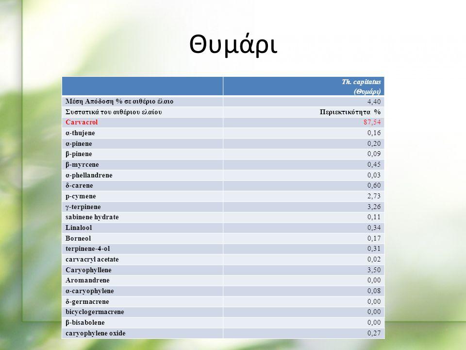 Th. capitatus (Θυμάρι) Μέση Απόδοση % σε αιθέριο έλαιο 4,40 Συστατικά του αιθέριου ελαίουΠεριεκτικότητα % Carvacrol87,54 α-thujene0,16 α-pinene0,20 β-