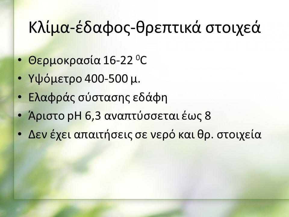 Κλίμα-έδαφος-θρεπτικά στοιχεά Θερμοκρασία 16-22 0 C Υψόμετρο 400-500 μ.