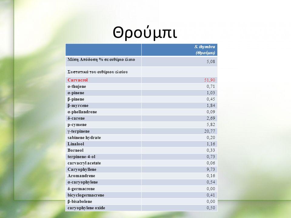 S. thymbra (Θρούμπι) Μέση Απόδοση % σε αιθέριο έλαιο 5,08 Συστατικά του αιθέριου ελαίου Carvacrol51,90 α-thujene0,71 α-pinene1,03 β-pinene0,45 β-myrce