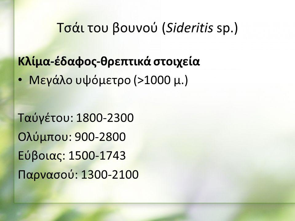 Κλίμα-έδαφος-θρεπτικά στοιχεία Μεγάλο υψόμετρο (>1000 μ.) Ταύγέτου: 1800-2300 Ολύμπου: 900-2800 Εύβοιας: 1500-1743 Παρνασού: 1300-2100 Τσάι του βουνού (Sideritis sp.)
