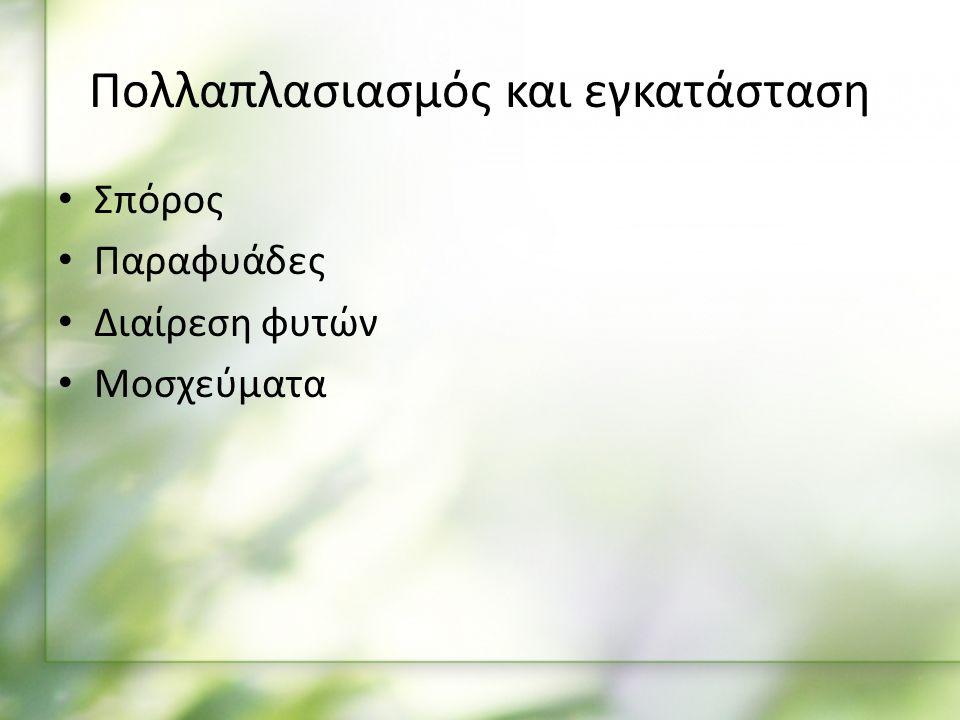 Πολλαπλασιασμός και εγκατάσταση Σπόρος Παραφυάδες Διαίρεση φυτών Μοσχεύματα