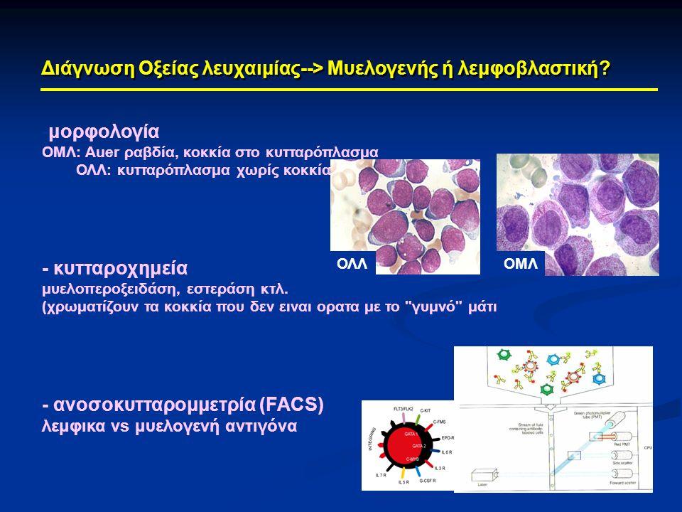 Διάγνωση Οξείας λευχαιμίας--> Μυελογενής ή λεμφοβλαστική? -μορφολογία ΟΜΛ: Auer ραβδία, κοκκία στο κυτταρόπλασμα ΟΛΛ: κυτταρόπλασμα χωρίς κοκκία - κυτ