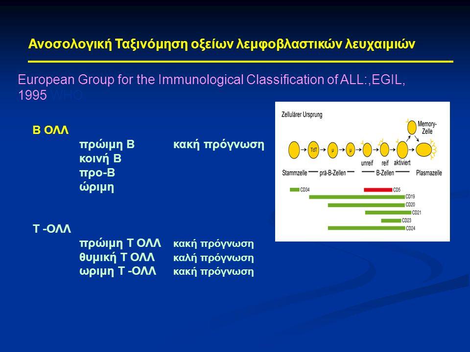 European Group for the Immunological Classification of ALL:,EGIL, 1995 WΗΟ Ανοσολογική Ταξινόμηση οξείων λεμφοβλαστικών λευχαιμιών Β ΟΛΛ πρώιμη Βκακή πρόγνωση κοινή Β προ-Β ώριμη Τ -ΟΛΛ πρώιμη Τ ΟΛΛ κακή πρόγνωση θυμική Τ ΟΛΛ καλή πρόγνωση ωριμη Τ -ΟΛΛ κακή πρόγνωση