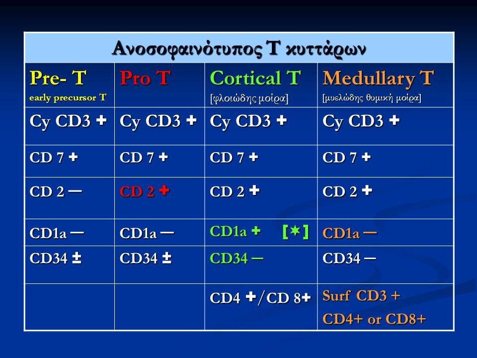 Ανοσοφαινότυπος Τ κυττάρων Pre- T early precursor T Pro T Cortical T [φλοιώδης μοίρα] Medullary T [μυελώδης θυμική μοίρα] Cy CD3 + CD 7 + CD 2 ─ CD 2 + CD1a ─ CD1a + [  ] CD1a ─ CD34 ± CD34 ─ CD4 + / CD 8 + Surf CD3 + CD4+ or CD8+