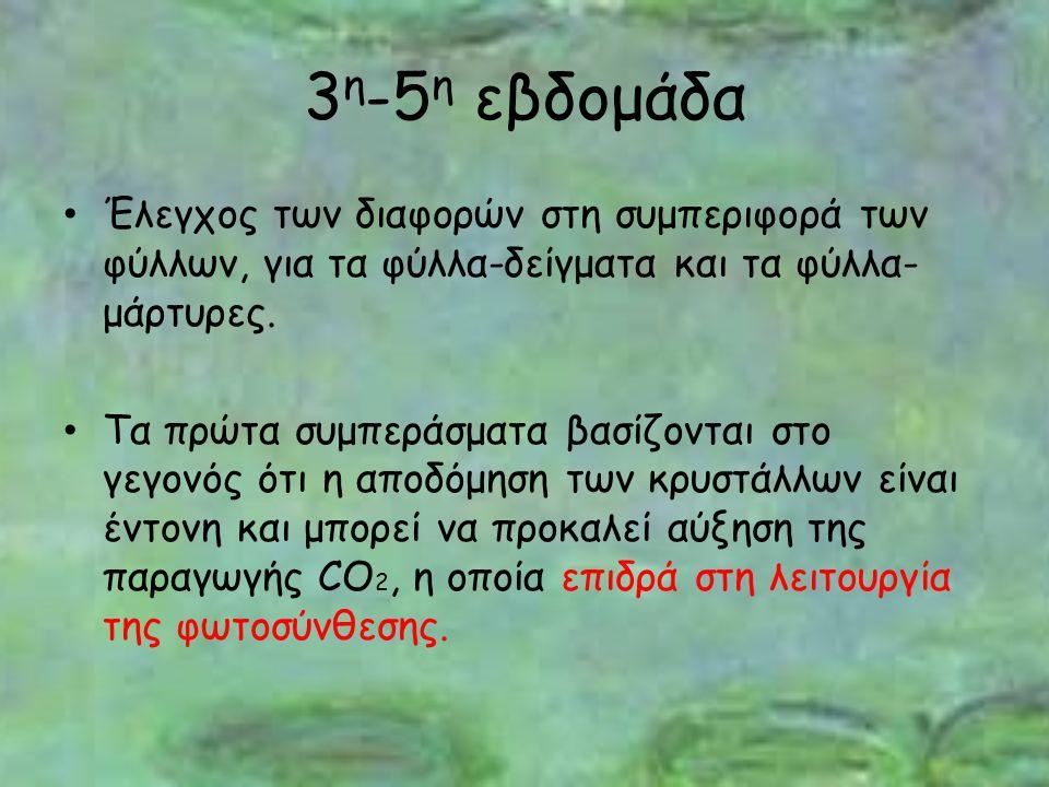 3 η -5 η εβδομάδα Έλεγχος των διαφορών στη συμπεριφορά των φύλλων, για τα φύλλα-δείγματα και τα φύλλα- μάρτυρες. Τα πρώτα συμπεράσματα βασίζονται στο