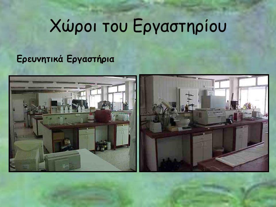 Χώροι του Εργαστηρίου Ερευνητικά Εργαστήρια