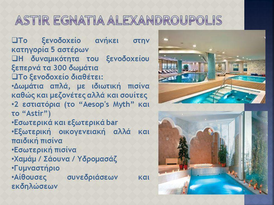  Το ξενοδοχείο ανήκει στην κατηγορία 5 αστέρων  Η δυναμικότητα του ξενοδοχείου ξεπερνά τα 300 δωμάτια  Το ξενοδοχείο διαθέτει: Δωμάτια απλά, με ιδιωτική πισίνα καθώς και μεζονέτες αλλά και σουίτες 2 εστιατόρια (το Aesop s Myth και το Astir ) Εσωτερικά και εξωτερικά bar Εξωτερική οικογενειακή αλλά και παιδική πισίνα Εσωτερική πισίνα Χαμάμ / Σάουνα / Υδρομασάζ Γυμναστήριο Αίθουσες συνεδριάσεων και εκδηλώσεων