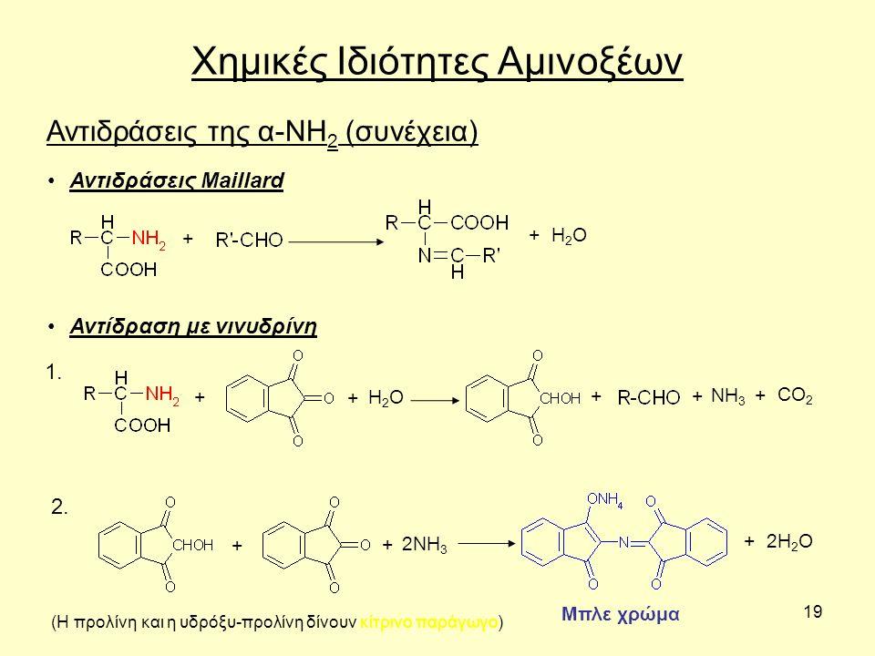 19 Χημικές Ιδιότητες Αμινοξέων Αντιδράσεις της α-ΝΗ 2 (συνέχεια) Αντιδράσεις Maillard + + H2OH2O Αντίδραση με νινυδρίνη + + H2OH2O 1. ΝΗ 3 CO 2 ++ + 2